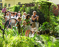 During the last weekend in July, tnes of thousands of people toured gardens throughout the City of Buffalo.