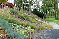 Hundreds of shrubs, long-blooming perennials and ornamental grasses now cover the slope below the residence.
