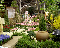The annual GardenScape Flower and Garden Show in Rochester is approaching its twentith anniversary.