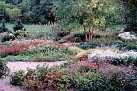 Just over a one hour drive from downtown Syracuse the peony and perennial garden at the Cornell Plantations in Ithaca is great place to learn more about perennials that are well-suited for Central New York landscapes and gardens.