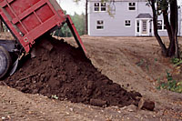 Topsoil can be a significant source of weeds in new landscape plantings.
