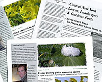 I can help you tell your story through a variety of print media.