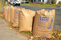 Most municipalities encourage their residents to bag their leaves and set them at the curb for collection. This process is time-consuming for residents and expensive for municipalities.