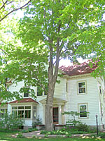 This large maple is within fifteen feet of the foundation of this home and will cause considerable damage if it fails in a storm.