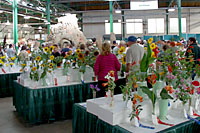 There are eight horticulture competitions in the Horticulture Building at the Great New York State Fair.